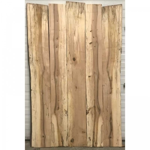 Spalted Hard Maple 5 set 38x55