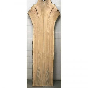 honey locust 1 set 24-38x96
