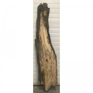 Spalted silver maple 8-14x63